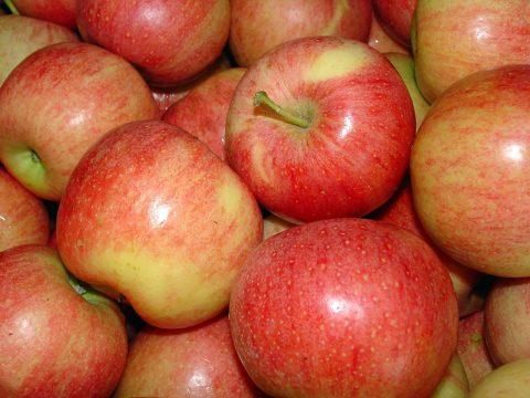 cascina-palazzo-brookfield-apples