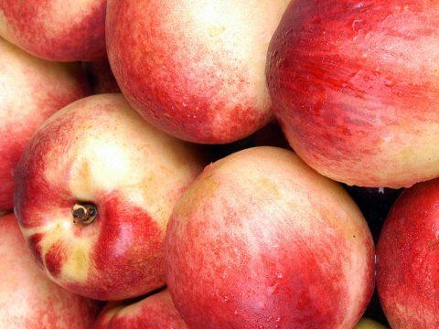 cascina-palazzo-nectaross-peaches