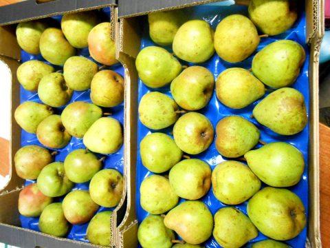 cascina-palazzo-decana-pears