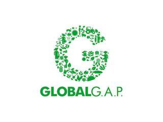 global-gap-logo